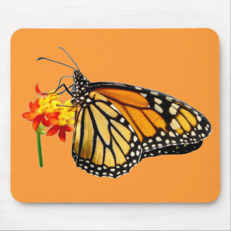 Isolated monarch butterfly mouse pad