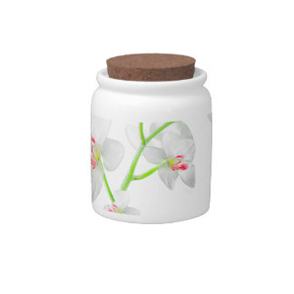 Isolated Orquideas Blossom Candy Jar