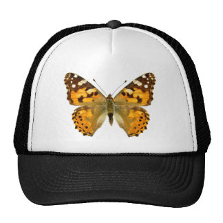 Isolated painted lady butterfly trucker hat