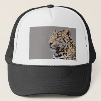 Isolated portrait of Leopard Trucker Hat