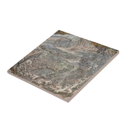 Isolated Rock on mountain Ceramic Tiles