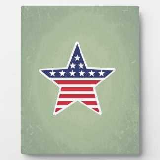 Isolated Star With American Flag Design Plaques