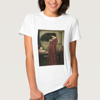 Isolde and Crystal Ball 1902 T Shirt