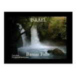 ISRAEL Banias Falls Postcard