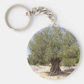 Israel Olive Tree Keychain