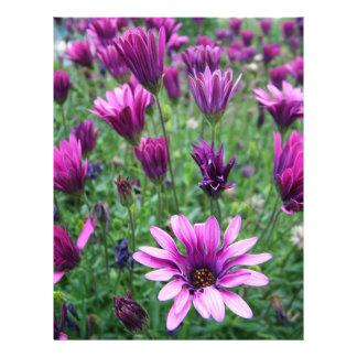 Israel Spring Flowers Flyer