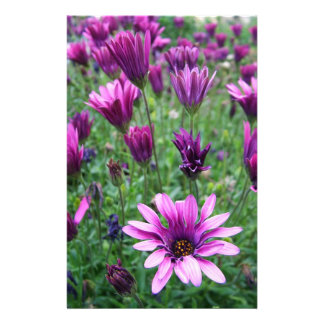 Israel Spring Flowers Stationery Paper