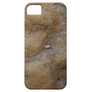 Israel Western Wall/Kotel iPhone 5 Case