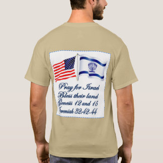 Israeli American flag collection T-Shirt