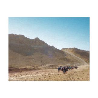 Israeli Desert Hike Canvas Print