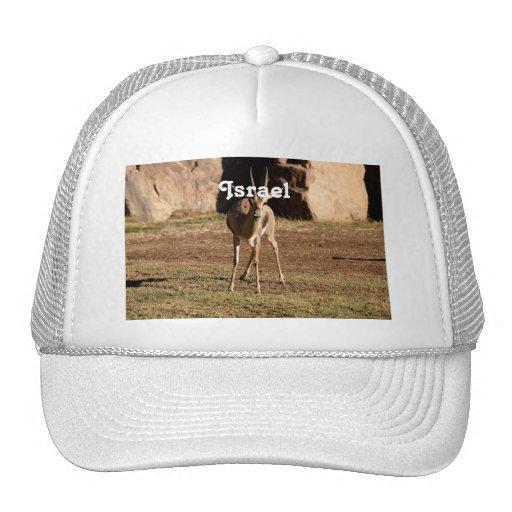 Israeli Gazelle Trucker Hat