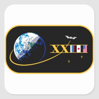 ISS Crews:  Expedition 23 Square Sticker