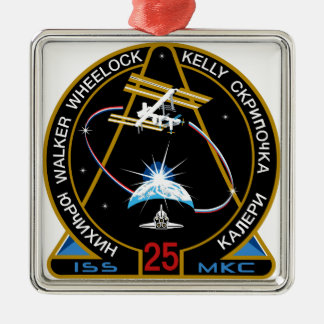 ISS Crews:  Expedition 25 Metal Ornament