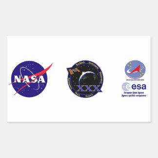 ISS Crews:  Expedition 30 Sticker