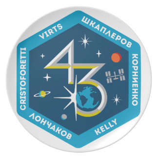 ISS Crews:  Expedition 43 Melamine Plate