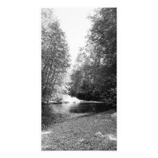 Issaquah River 2 Photo Print