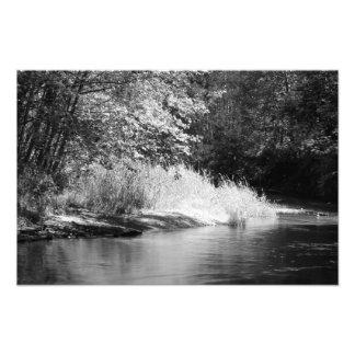 Issaquah River Photo Print