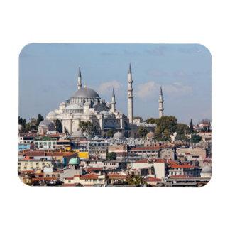 Istanbul Bosporus Magnet
