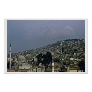 Istanbul View Poster