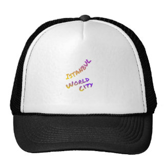 Istanbul world city letter art color Asia Europa Trucker Hat