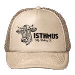 Isthmus Fly Fishing Trucker Hat