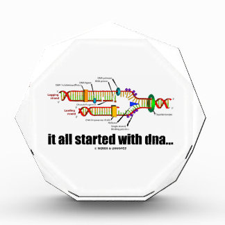 it all started with DNA.. (DNA Replication) Awards