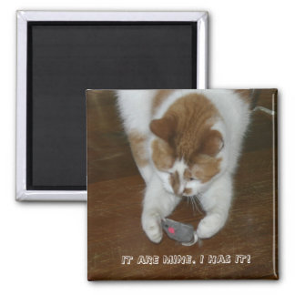 IT ARE MINE. I HAS IT! 2 INCH SQUARE MAGNET