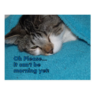 It can't be morning POSTCARD