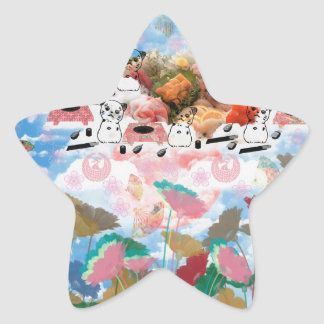 It is good it does and the national so it causes star stickers