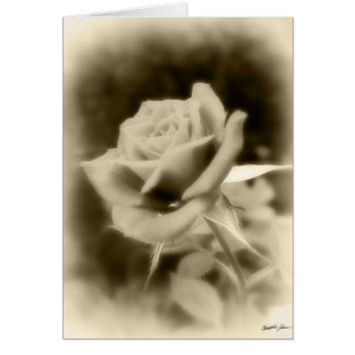 It is Just a Rose Card