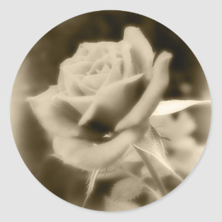 It is Just a Rose Classic Round Sticker