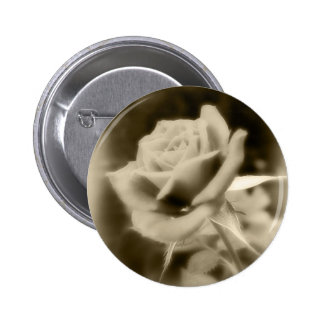 It is Just a Rose Pinback Button