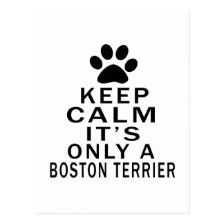 It is only a Boston Terrier Postcard