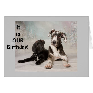 "IT IS ""OUR"" BIRTHDAY-GREAT DAY! TWIN OR MUTUAL DAY CARD"
