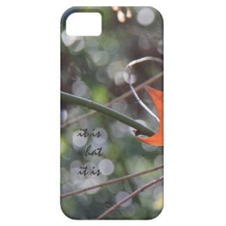 it is what it is; abstract autumn leaf iPhone Case