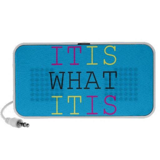 It Is What It Is - CMYK iPhone Speaker