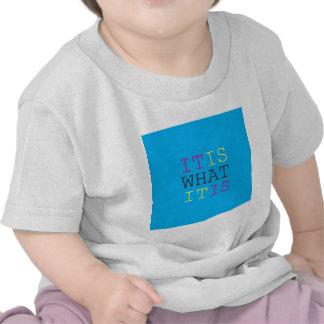 It Is What It Is - CMYK T Shirt