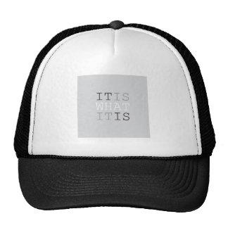 It Is What It Is - Gray Trucker Hat