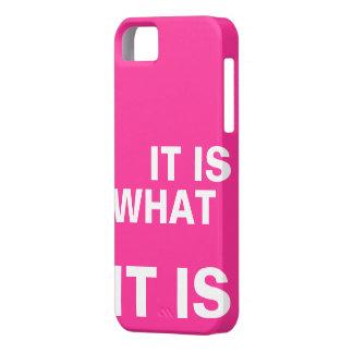 It is What it is iPhone SE/5/5s Case
