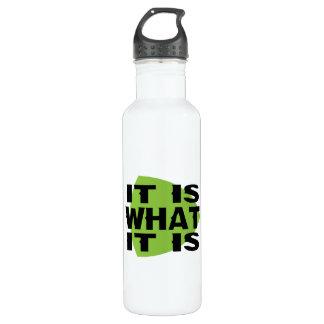 It Is What It Is Stainless Steel Water Bottle