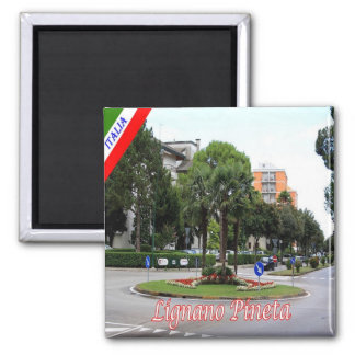 IT - Italy - Lignano - Pinewood 2 Inch Square Magnet