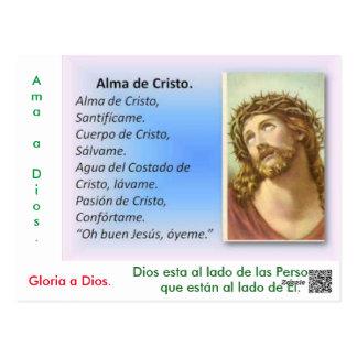 It loves God Postcard