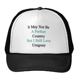 It May Not Be A Perfect Country But I Still Love U Trucker Hat