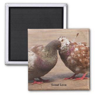 It must be love fridge magnets