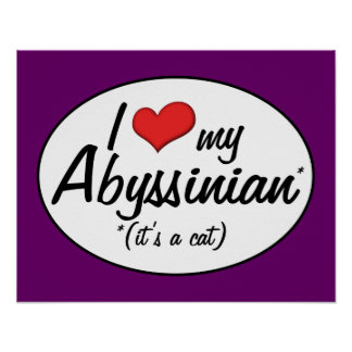 It s a Cat I Love My Abyssinian Print