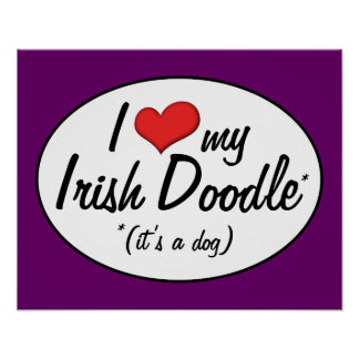 It s a Dog I Love My Irish Doodle Poster