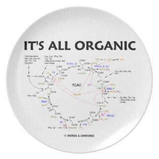 It s All Organic Krebs Cycle Biochemistry Dinner Plate