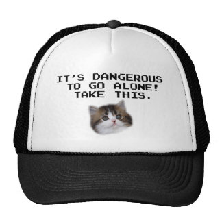 It's Dangerous To Go Alone Take This Kitten Hat
