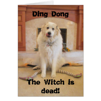 It s Halloween The wicked witch is dead Card