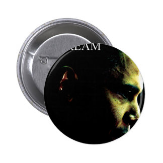 it' s not a dream the president pin